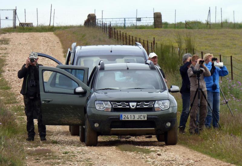Ruta guiada llanos de Cáceres